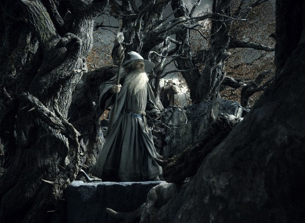 hobbit-desolation-of-smaug-ian-mckellan-2-600x439