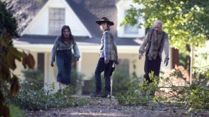 the-walking-dead-season-4-episode-9-after-carl